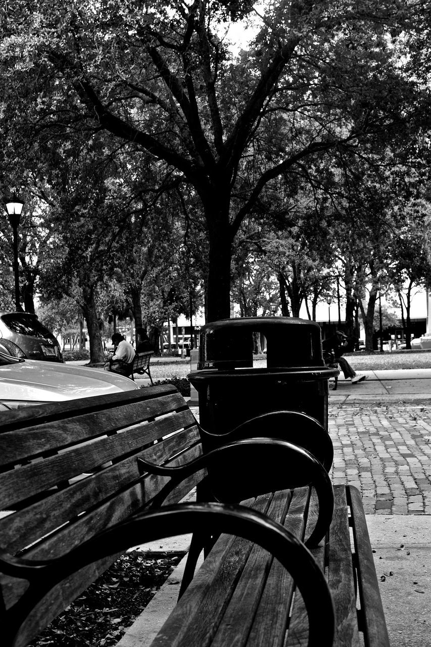 tree, outdoors, bicycle, transportation, street, park - man made space, day, city, bicycle rack, no people, nature, sky