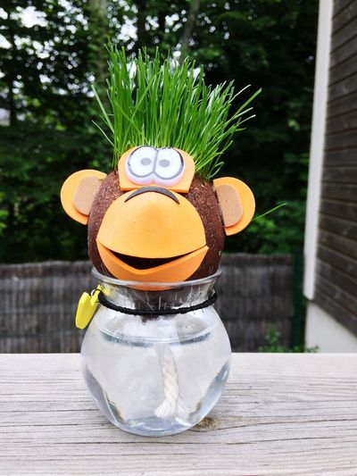 Wood - Material Nature Grass Monkey Fun