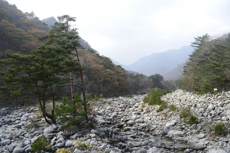 Seorak Seoul, Korea