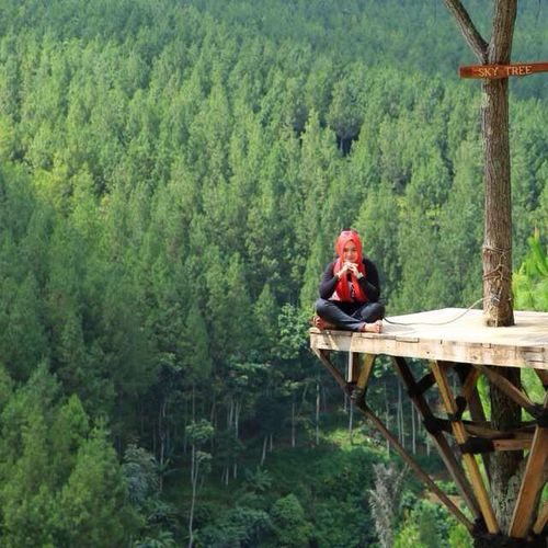 Up Above Tree One Woman Only Sitting Green Color Nature Outdoors Beauty In Nature Good Morning Self Portrait Confidence  Front View Looking At Camera Hello World Sunny Day Enjoying Life West Java,Indonesia