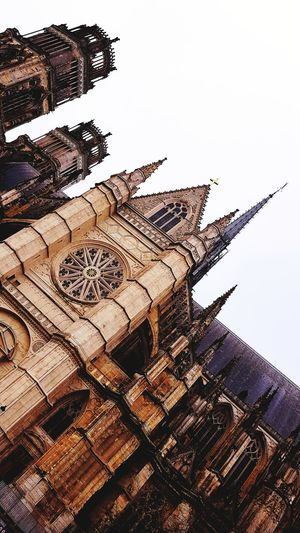 Orléans Cathedral Orléans France Orléans 🔴⚫️🙌 Religious Architecture Catholic Arcitecture City Historical Monuments Low Angle View Outdoors Day No People Sky Animal Themes Nature