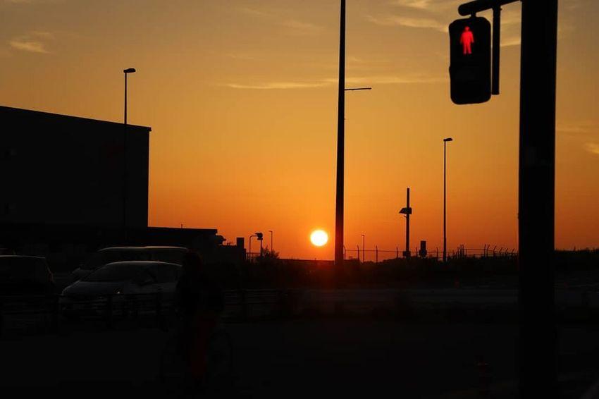 『信号待ちの車窓』 Nature Photography Sunset_collection Canon Canonphotography Japan Photography Ginkgo Japan 影絵 影画 夜景 影 夕日 Sunset Sunset Yellow City Red Silhouette Sky