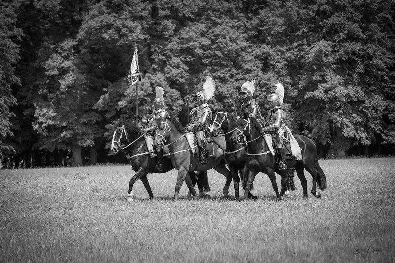 Men riding horses on field against trees