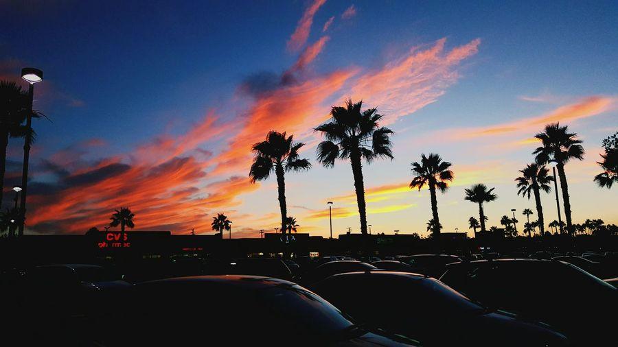 Glitch San Diego Fall Skies