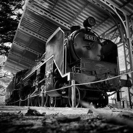 SL 蒸気機関車 Steam Locomotive Steam Trains モノクローム モノクロ Blackandwhite Black And White Monochrome Black & White