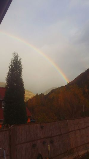 Regenbogen Spectrum Refraction Tree Multi Colored Mountain Performance Group Double Rainbow Autumn Weather