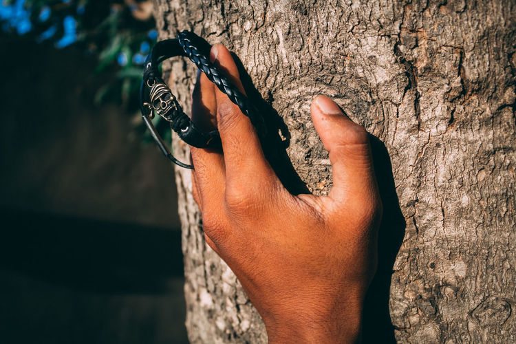 Cropped hand touching tree trunk