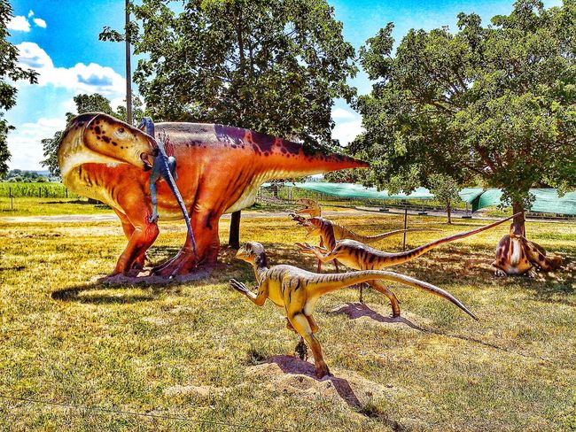 DinoPark Ungarn Nature Landscape Traveling Hdr_Collection