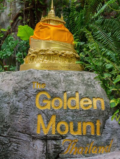 The Golden Mount - Thailand Architecture Bangkok Famous Gold Golden Golden Mount Nature Rock Thailand Travel Tree Close-up Destination Famous Place Forest Landmark Monk  Mount No People Outdoors Religion Religious  Temple Vegetation Yellow