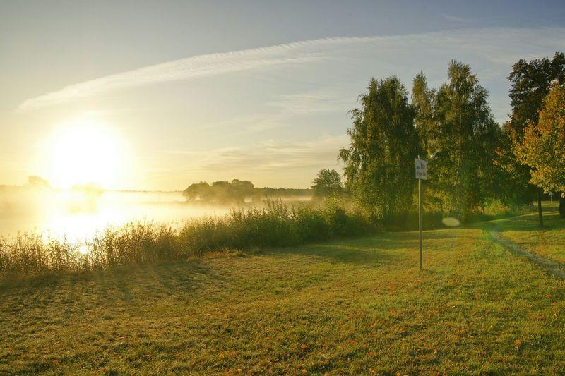 Enjoying The Sun Beautiful Day Enjoying Life Wonderful Foggy Morning