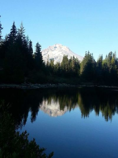 Tree Reflection Nature Pine Tree Snow Water Landscape Sky Beauty In Nature Lake Cold Temperature Pine Woodland No People Scenics Winter Forest Outdoors Mountain Tranquility Sunset HIKES OUTDOOR Natural Parkland Trails Mt Hood Oregon Mirror Lake