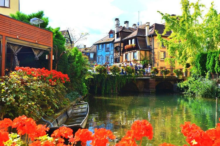 Beautiful view of an old town of Colmar, France Building Exterior Flower Architecture Water Built Structure Day Outdoors Plant Nature Tree Leaf Old Buildings Covered Bridge Beauty In Nature Beauty In Nature Travel Destinations Travel Photography Colmar, Alsace, France Residential Building Window Box Canal Landscape Scenics