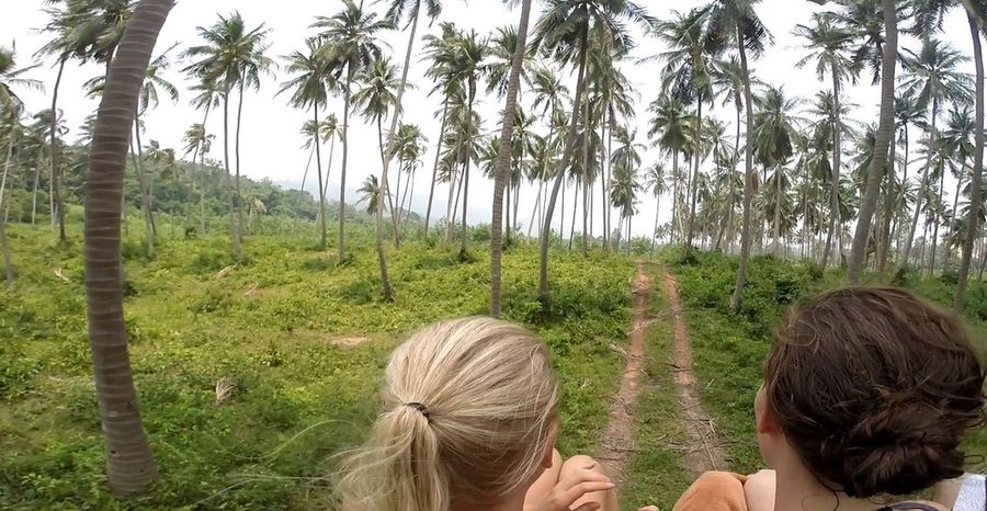 Jungle at Koh Samui .. seeing🌴Palms🌴 of Thailand 🌏 Offroad through Wildlife & Nature on top of a Jeep with Friendship Spotted In Thailand Connected By Travel