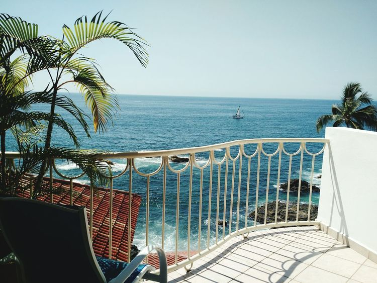Sea Water Scenics Railing No People Horizon Over Water Tranquility Travel Destinations Day Beauty In Nature Palm Tree Outdoors Nature Beach Sky Sailing Beauty In Nature Puerto Vallarta Yachting Tranquil Scene Sailboat Tranquility Coastal Views Sun And Sea Mexico