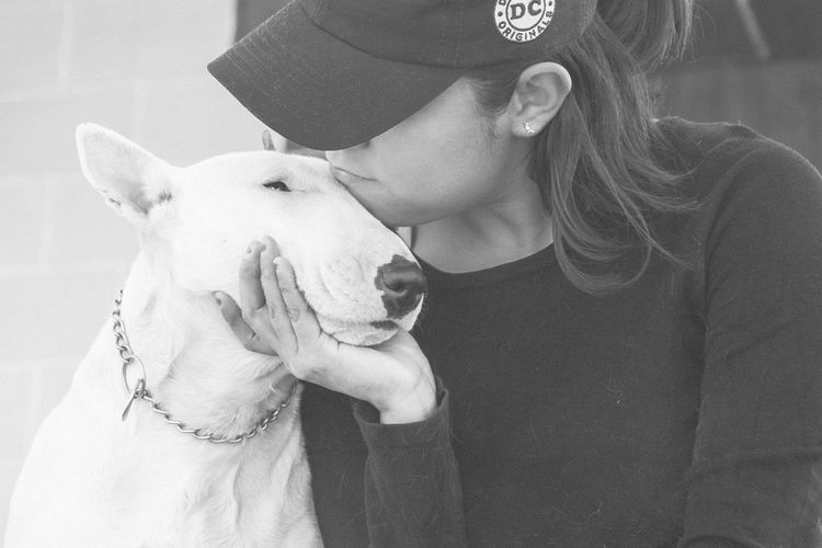 Bullterrieringles Bullterrier My Dog Dog I Love My Dog Blackandwhite Photo Kiss Muza Gris