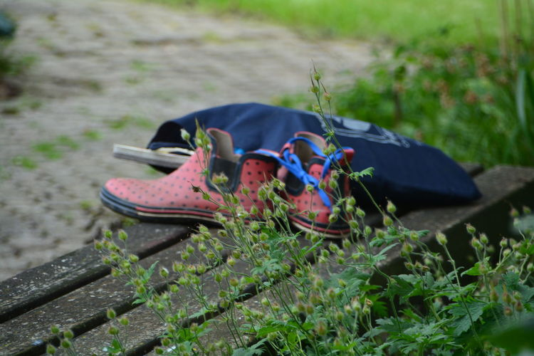 Plants Against Shoes By Shopping Bag On Wooden Bench