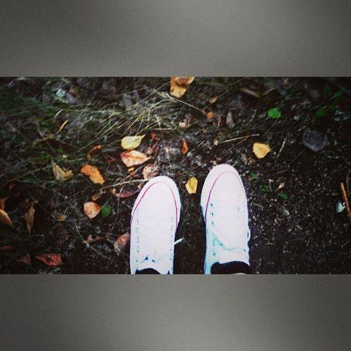 путешествие ног