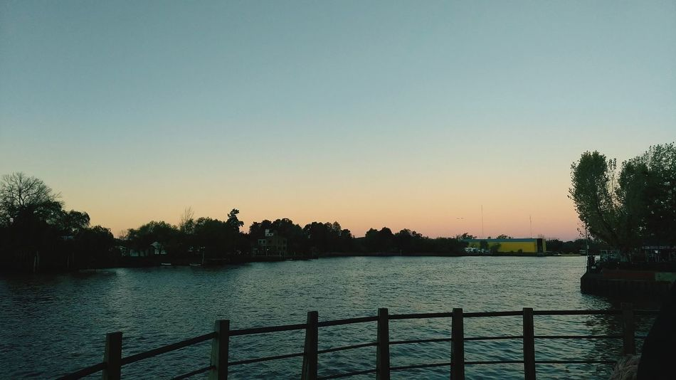19:30 p.m. #tigre #argentina #photography #sunset Tree Water Clear Sky Sunset Silhouette Sky