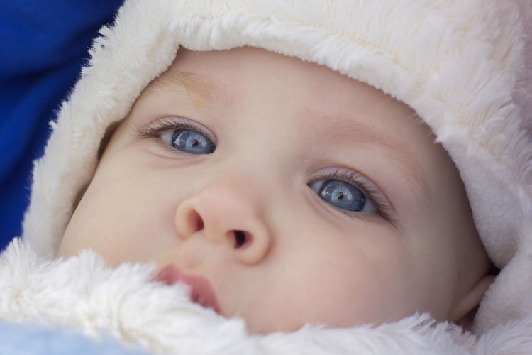 [Carl Zeiss Jena Flektogon 35mm f/2.8] Child Childhood Baby Young Innocence Portrait Close-up Cute One Person Babyhood Indoors  Headshot Hat Clothing Fur Lying Down Blue Eyes Human Face Hood - Clothing Softness Winter Wintertime Winter Clothes Cold Weather Cold Temperature