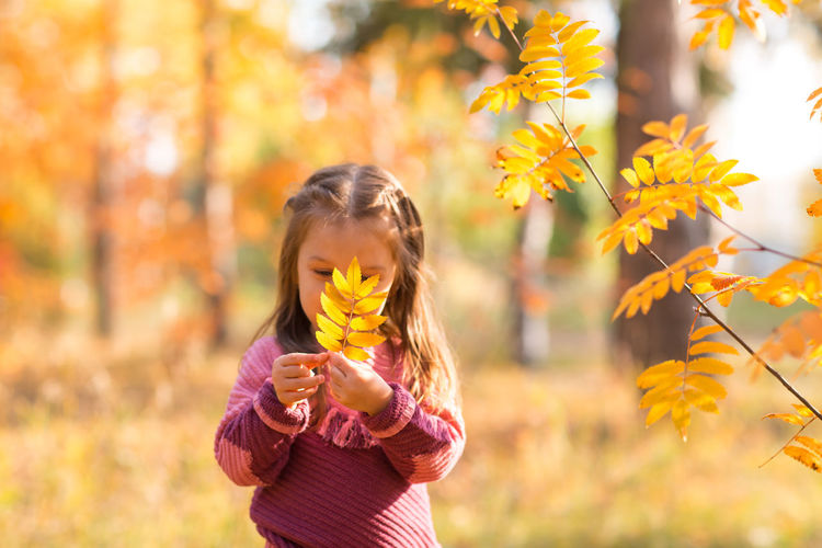 Close-up of girl holding yellow autumn leaves