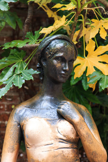 Juliet statue - Verona Italy Arena Art Art And Craft Branch City Close-up Coluseum Creativity Day Focus On Foreground Green Color History Human Representation Italy Leaf Romeo And Juliet Sculpture Statue The Past Verona