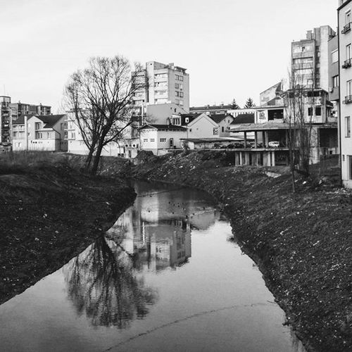 🌳🌆🌅 The End Of the Sunnyday River Riverside Tree Water Reflection EyeEm Best Shots - Black + White Buildings Architecture Town Prijedor Bnw_captures Bnw Bnw_life Bnw_society Blackandwhite Blackandwhitephotography Myworld_blackandwhite Follow4follow Vscocam