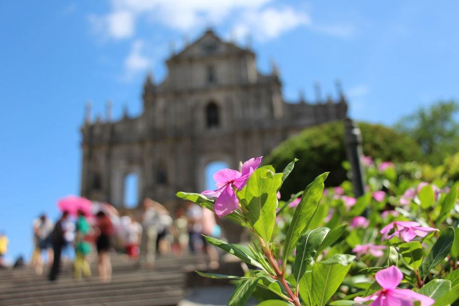 Macau Ruins Of St.Paul's Flower The Adventure Handbook Amazing Architecture