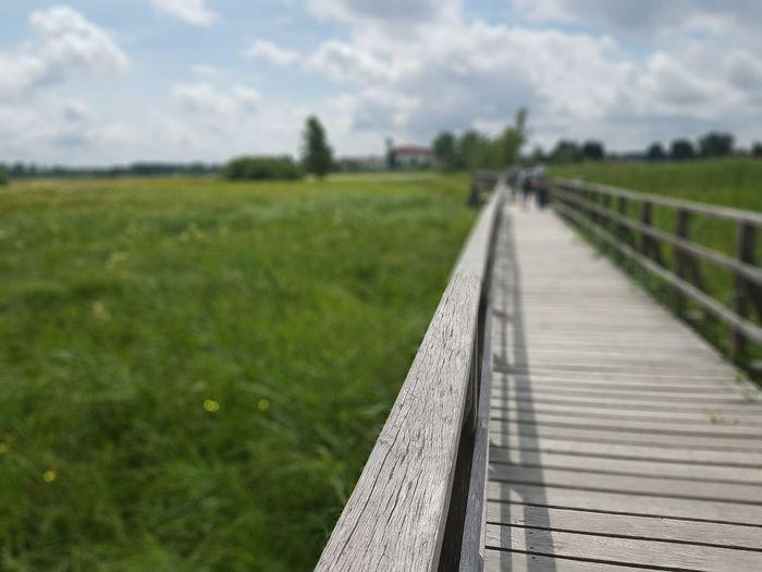 Way Footbridge