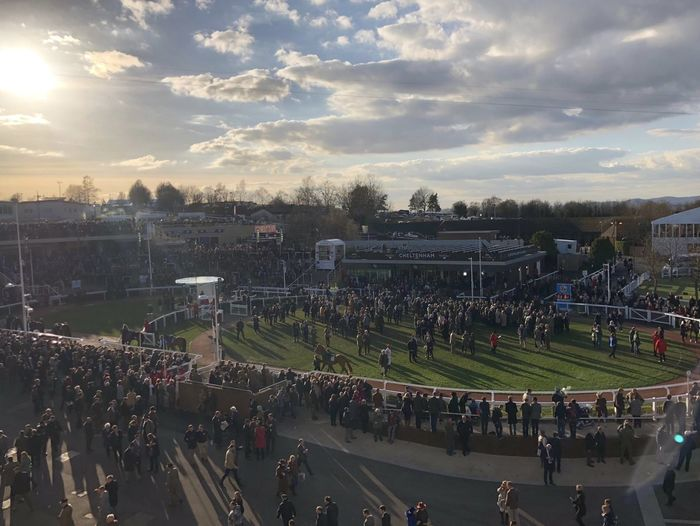 Sunshine at the 2018 Gold Cup