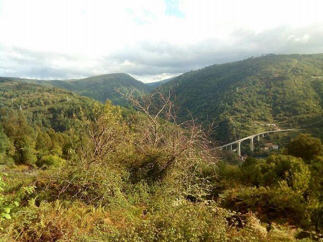 Bridge Galicia