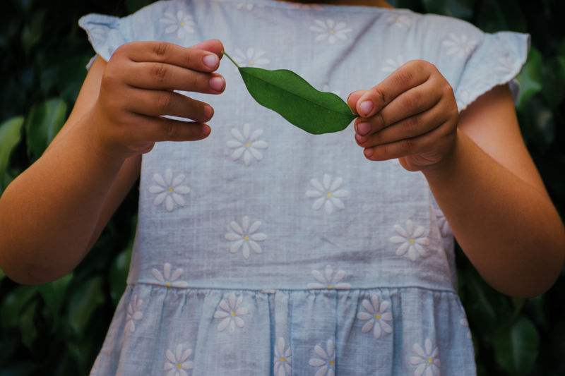 Midsection of woman holding leaves outdoors