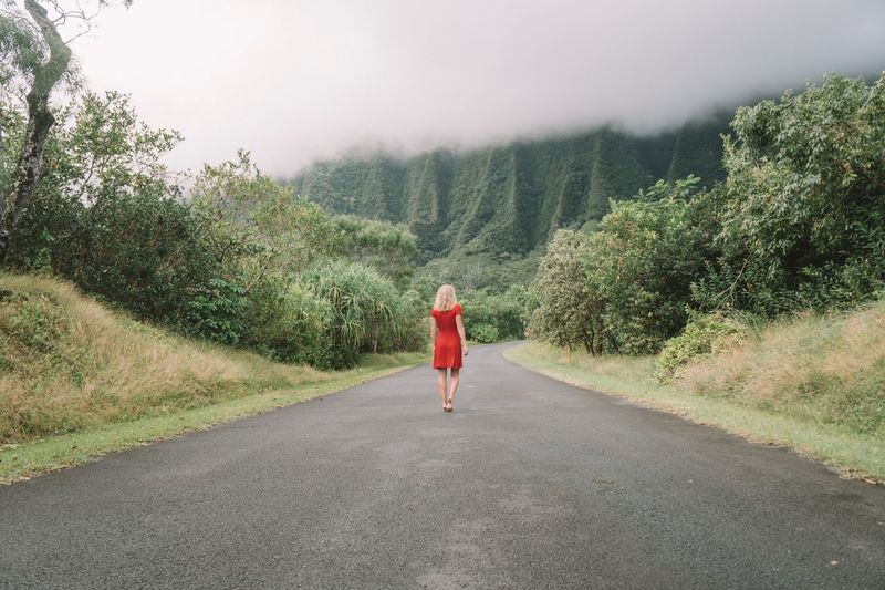 Rear view of mid adult woman in red dress walking on road amidst trees against cloudy sky