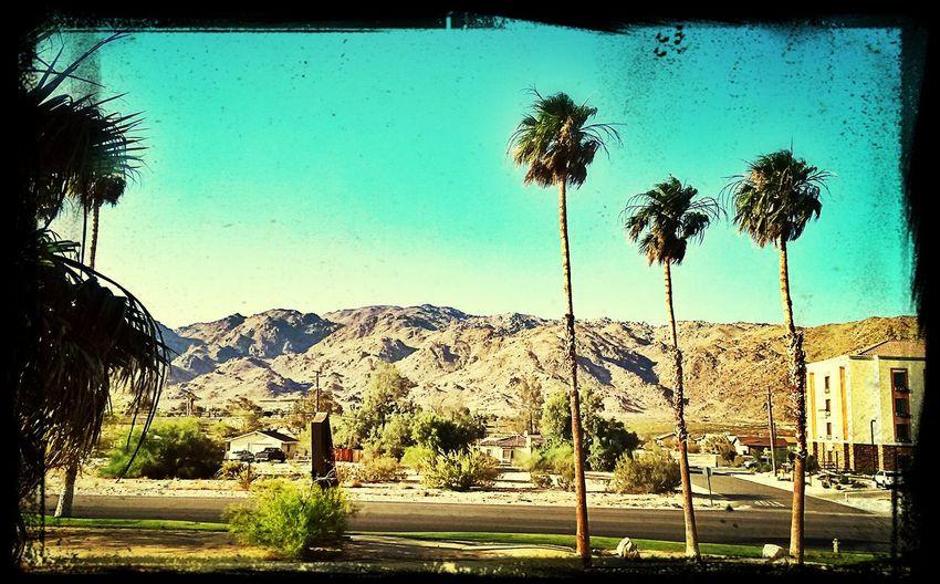 29 Palms, California
