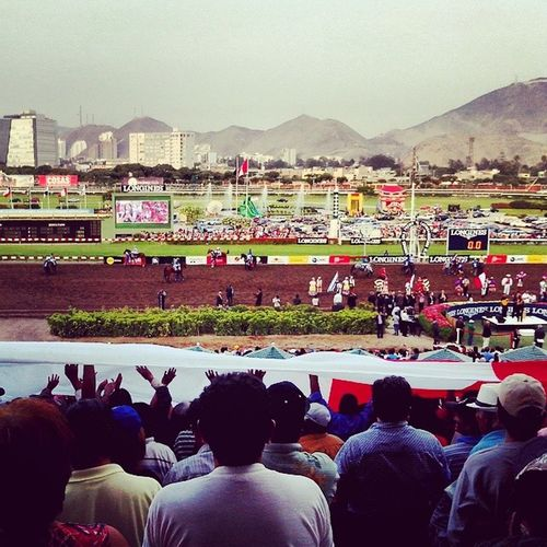 Igersperu Cometoperu Ig_peru Tarde  hipodromo jockey club flag peruvian people event