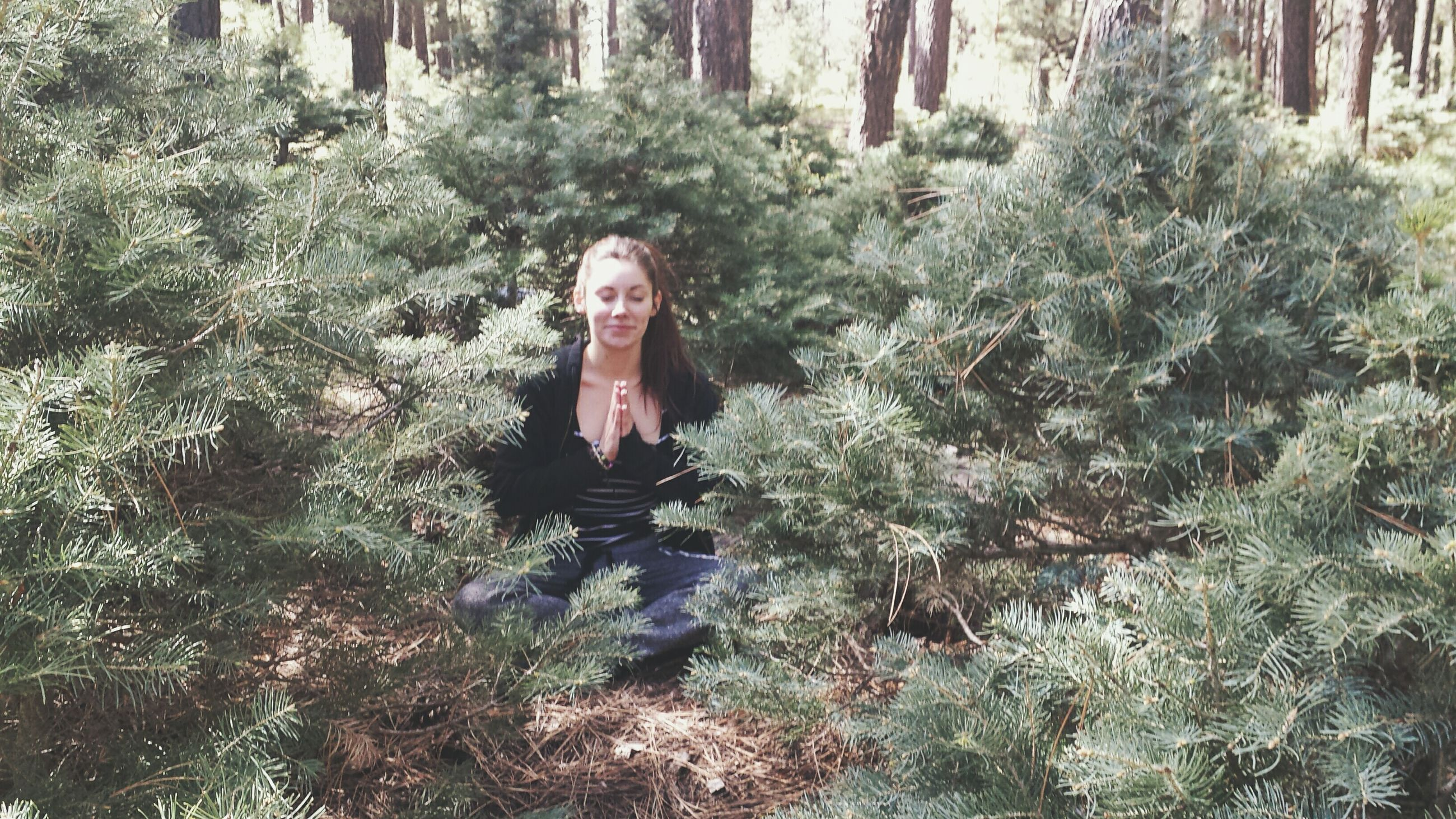 tree, forest, leisure activity, person, lifestyles, young adult, portrait, looking at camera, nature, woodland, tree trunk, front view, casual clothing, standing, tranquility, growth, young women, three quarter length