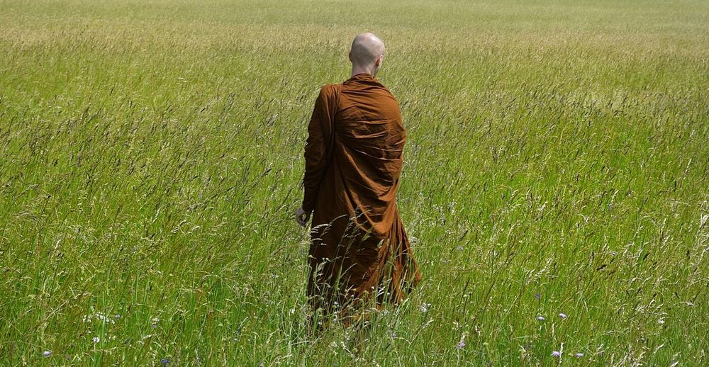 Buddhist monk, having a quiet walk through the alpine fields... Relaxing Monk  Buddhism Buddhist Monks Buddhist Buddhism Culture Robes Religion Religion And Beliefs Religious Images Mindfulness Stillness Walk Countryside