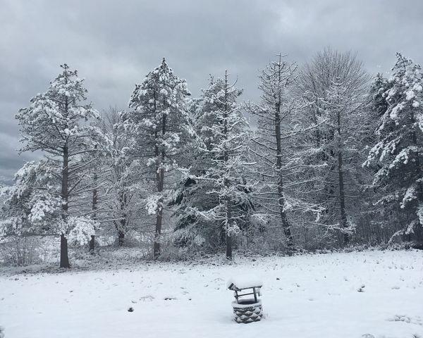 October Winter in Northwest PA