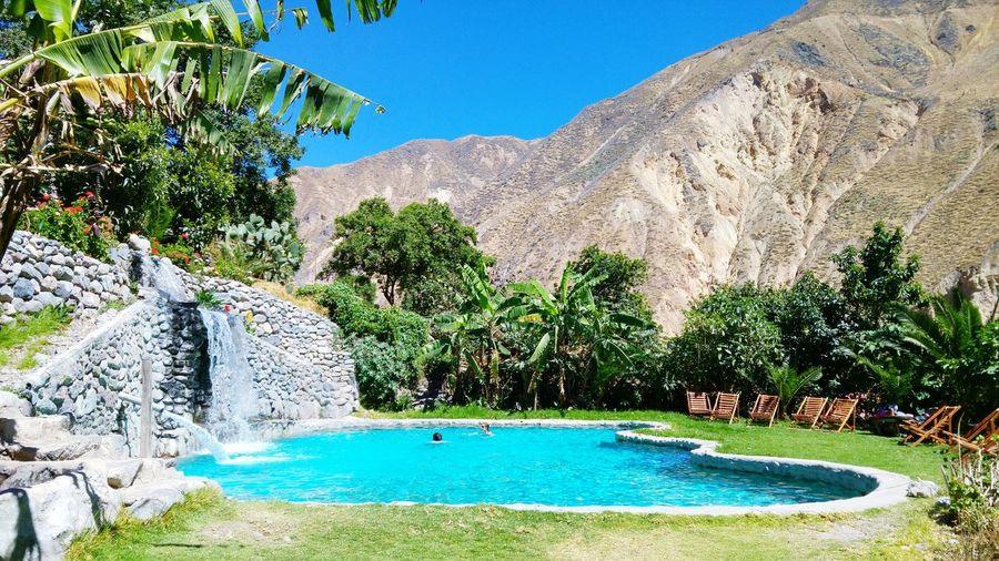 Pa-ra-dise: canyon da colca, Peru Water Swimming Pool Blue Tree Day Outdoors No People Nature Sky Beauty In Nature Peru Canyon Del Colca First Eyeem Photo Nature Connected By Travel Lost In The Landscape Mountain Vacations Paradise