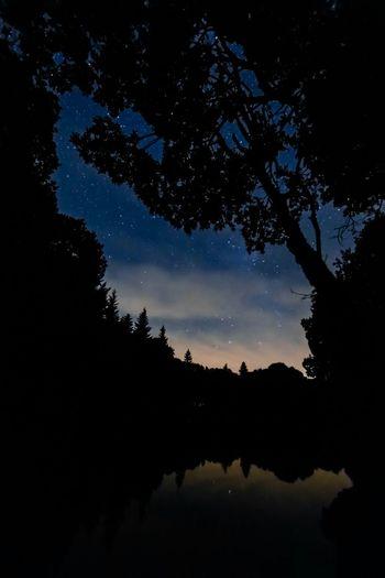 Nachts am See Lake Nightphotography Stars Night Nature