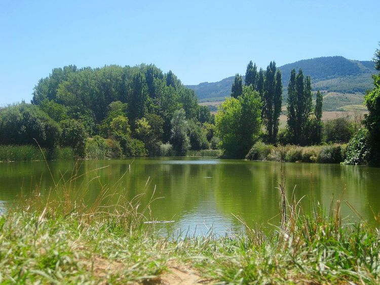 Little Lake , El Camino De Santiago Nature Capture Tomorrow