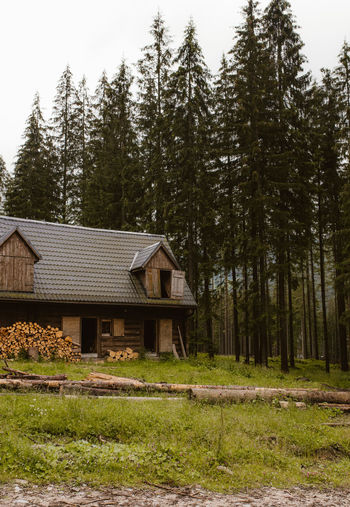House on field by trees in forest