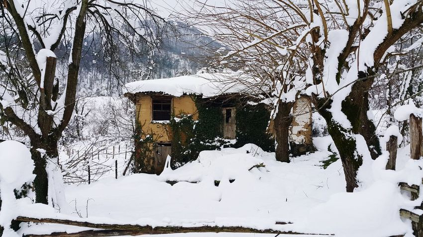 Karlar altında terk edilmiş eski ev, merhaba The abandoned old house under the snow... Forest Winter Snow Old House Ruin Ilimbey Turkish Geyve Narure Winter Snow Cold Temperature Building Exterior Nature Built Structure Outdoors Day No People Snowing
