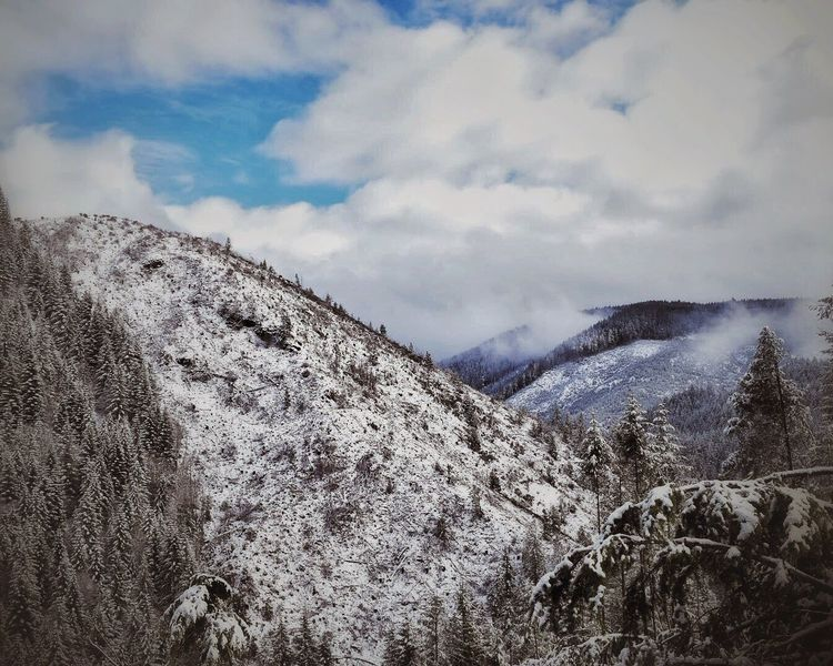 Mountain Sky Beauty In Nature Tranquility Nature Tranquil Scene Scenics Winter Cold Temperature Snow Weather Non-urban Scene Landscape Physical Geography Cloud - Sky Day Mountain Range Outdoors No People Slope Trees Snow Covered Logging Growth WoodLand
