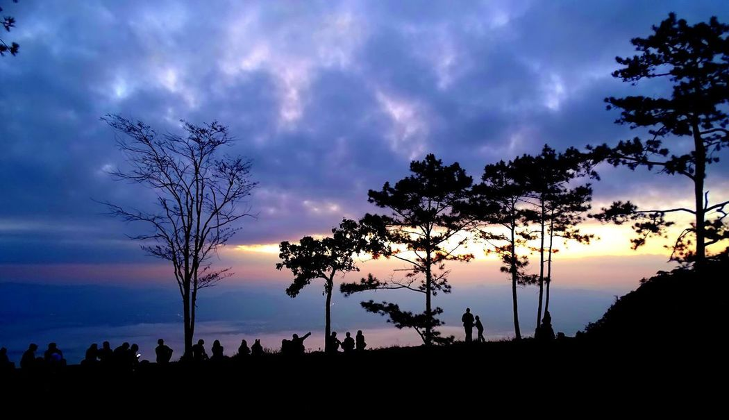 Beauty In Nature Cloud - Sky Day Landscape Nature No People Outdoors Palm Tree Scenics Sea Silhouette Sky Sunset Tranquil Scene Tranquility Tree Tree Trunk Waiting For Sunset