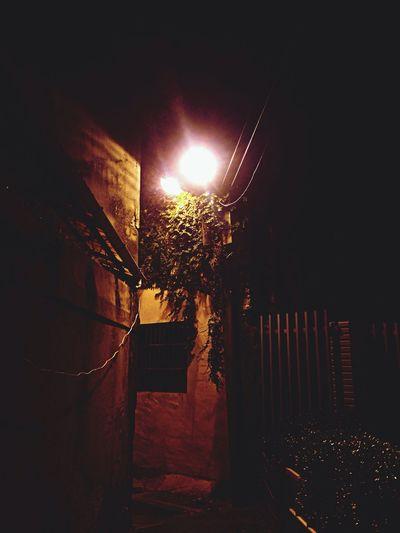 夜晚某角落。