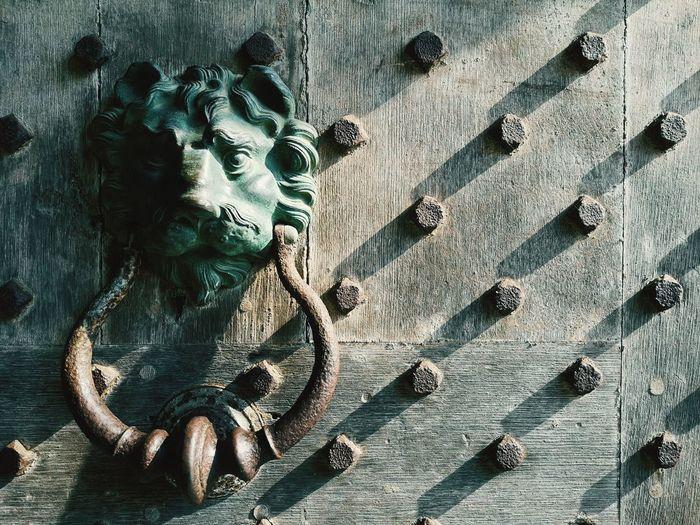 Close-up of lion head shaped door knocker