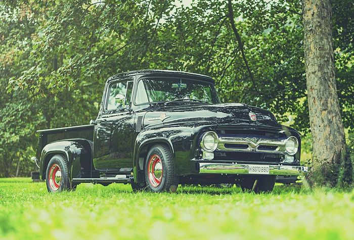 Ford F100 - V8, 1956 Car Collector's Car Ford F100 Ford V8 Classiccar Clasic Cars Coches Clasicos Coches Antiguos, Land Vehicle Grass Nature No People Transportation Photography Photoofday Photographer Asturias España USA American Cars Vintage Freelance Old-fashioned Collector´s Car Vintage Style Vintage Cars