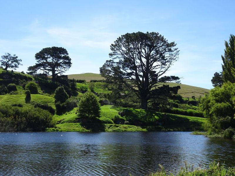 New Zealand New Zealand Landscape New Zealand Photography