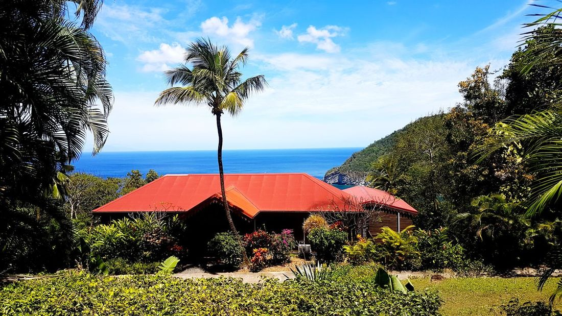 Summer Nature Beauty In Nature House Coluche's House Water Gwadeloupe Guadeloupe Gwada  Sea Blue