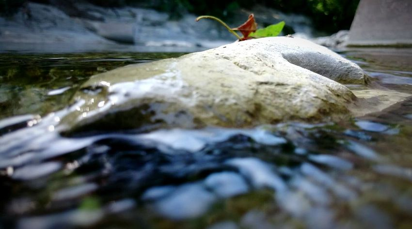 Rocks Water Xperiaphotography Professionalphotography Popular Nature Brown Captivation